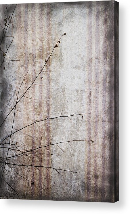 Grunge Acrylic Print featuring the photograph Simple Things Abstract by Kathy Clark