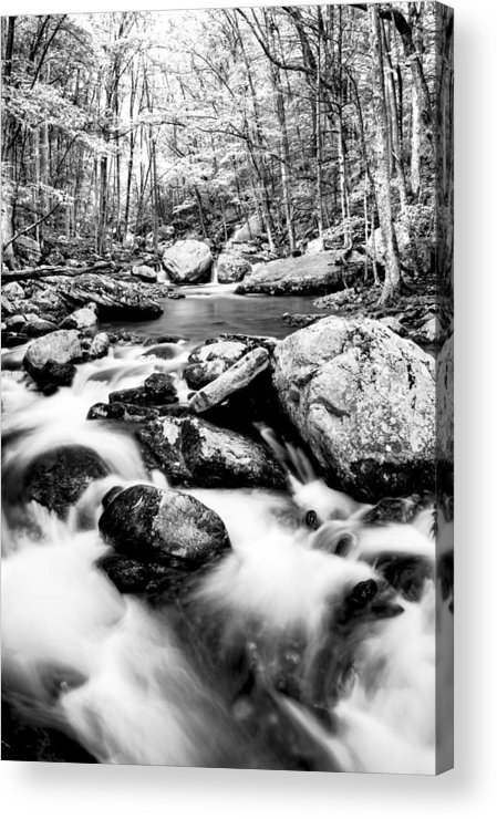 Beautiful Acrylic Print featuring the photograph Soothing by Darren Fisher