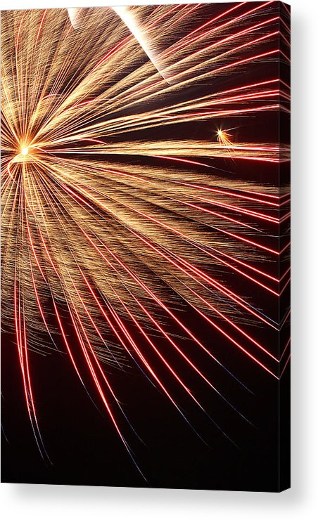 Light Acrylic Print featuring the photograph Spectacle by Elizabeth Hart