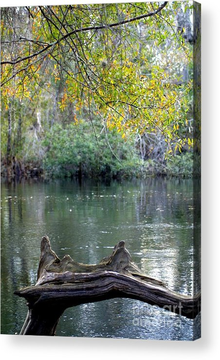Nature Acrylic Print featuring the photograph The Bridge by Dodie Ulery
