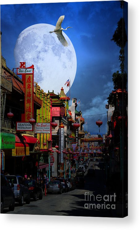 San Francisco Acrylic Print featuring the photograph The Great White Egret Of Chinatown . 7d7172 by Wingsdomain Art and Photography