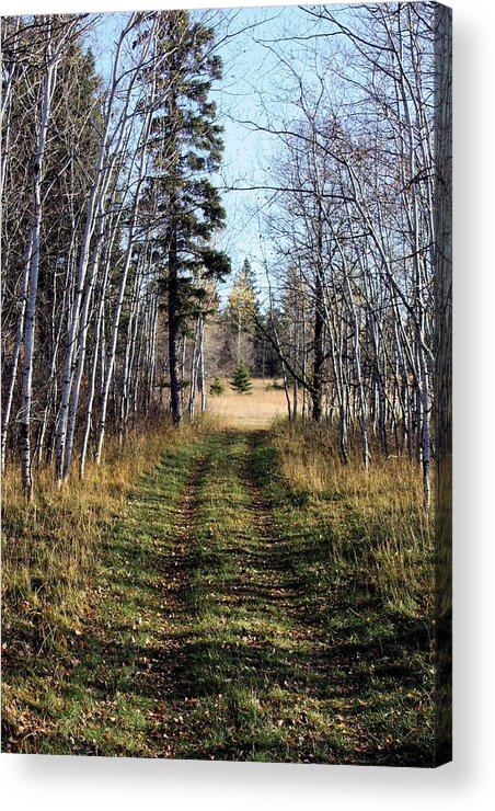 Path Acrylic Print featuring the photograph The Happy Path by Pat Purdy