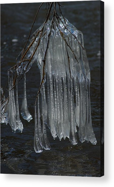 Ice Acrylic Print featuring the photograph Together by Joseph Yarbrough