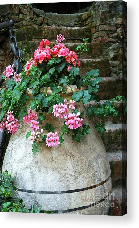 Italy Acrylic Print featuring the photograph Tuscan Earthenware Pot And Flowers by Allen Beatty