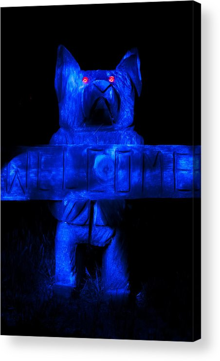 Asheville Acrylic Print featuring the photograph Welcome Bear by Allegory Imaging
