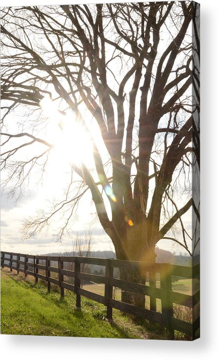 Field Acrylic Print featuring the photograph Winter At Greenrise by Victoria Lawrence