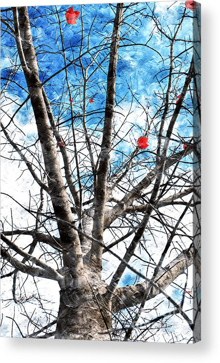 Tree Acrylic Print featuring the photograph Winter Is Near by Andee Design