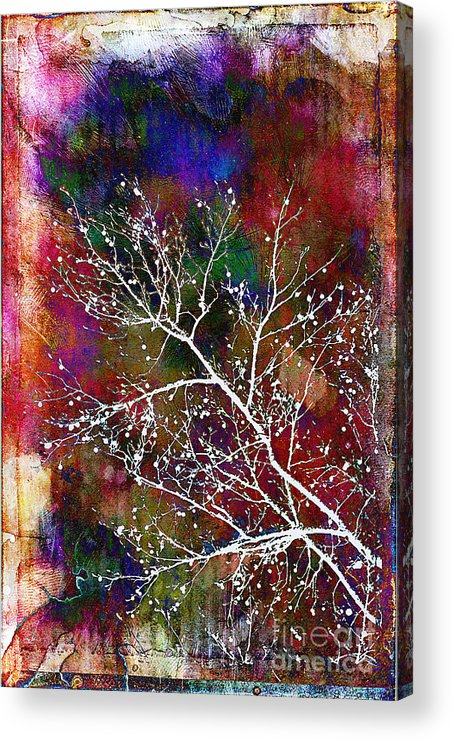 Winter Acrylic Print featuring the photograph Winter Wishes by Judi Bagwell