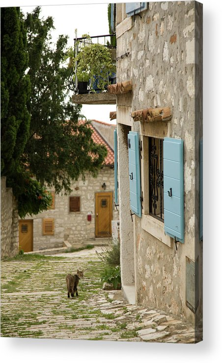 Croatia Acrylic Print featuring the photograph Rovinj by Ian Middleton