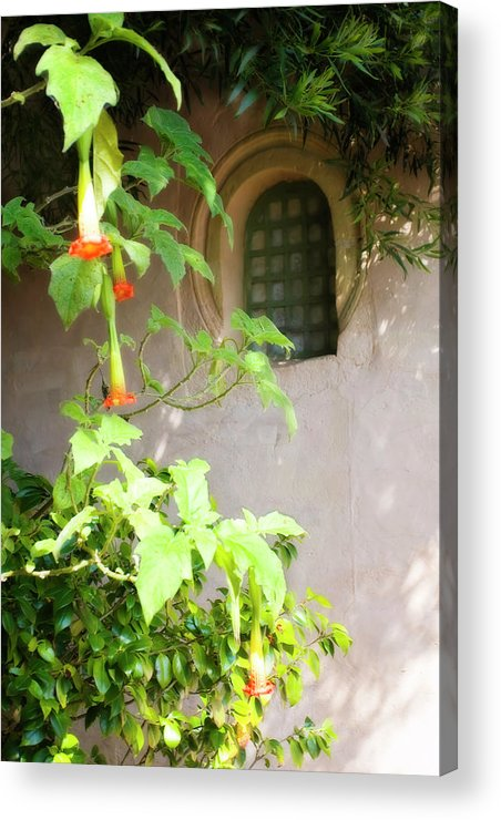 Photo Acrylic Print featuring the photograph Solitude by Alan Hausenflock