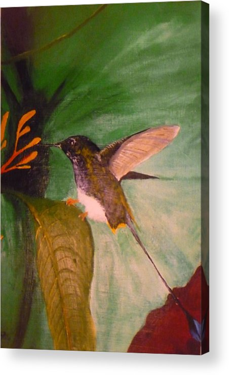 Nature Acrylic Print featuring the painting Untitled by Christian Hidalgo