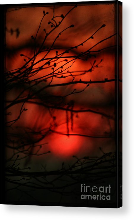 Sunset Acrylic Print featuring the photograph The Sunset by Angel Ciesniarska