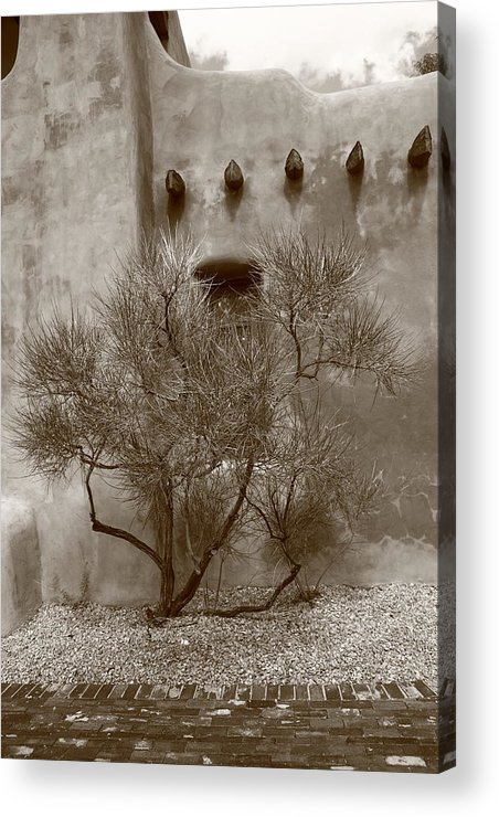 Adobe Acrylic Print featuring the photograph Santa Fe - Adobe Building And Tree by Frank Romeo