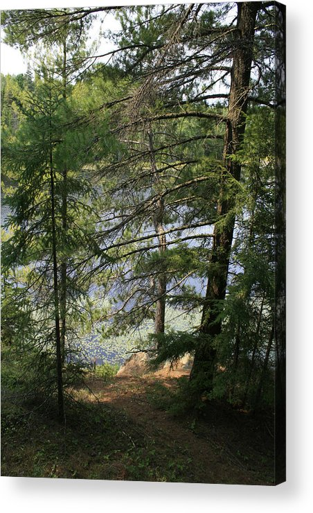 Photography Acrylic Print featuring the photograph A Place To Wander by Alan Rutherford