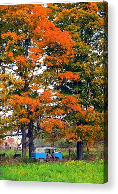 Abandoned Acrylic Print featuring the photograph Abandoned Hippie Van by Kenneth Summers
