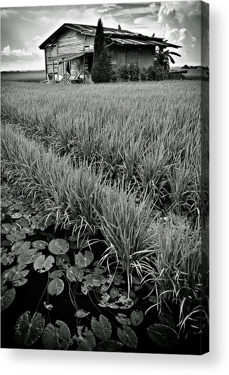 House Acrylic Print featuring the photograph Abandoned House by Dave Bowman