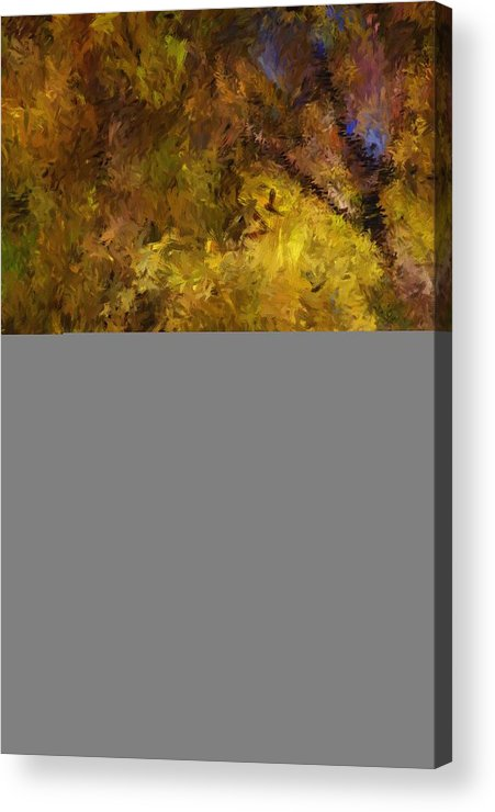 Abstract Digital Painting Acrylic Print featuring the digital art Autumn Abstract by David Lane