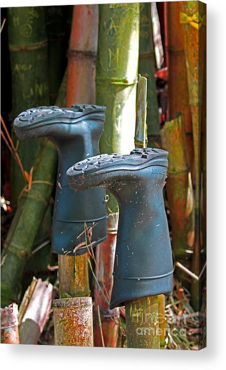 Blac Boots Acrylic Print featuring the photograph Bamboo Boots by Jennifer Robin