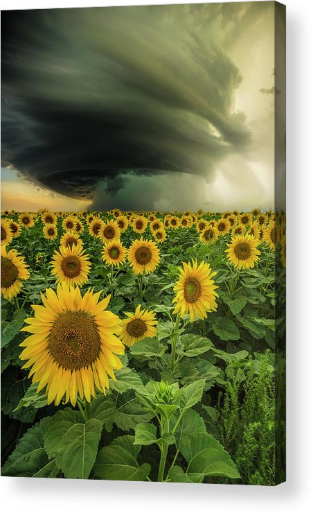 Supercell Acrylic Print featuring the photograph Beautiful Destruction by Aaron J Groen