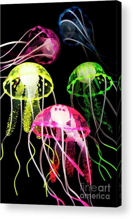 Medusa Acrylic Print featuring the photograph Beauty In Black Seas by Jorgo Photography - Wall Art Gallery