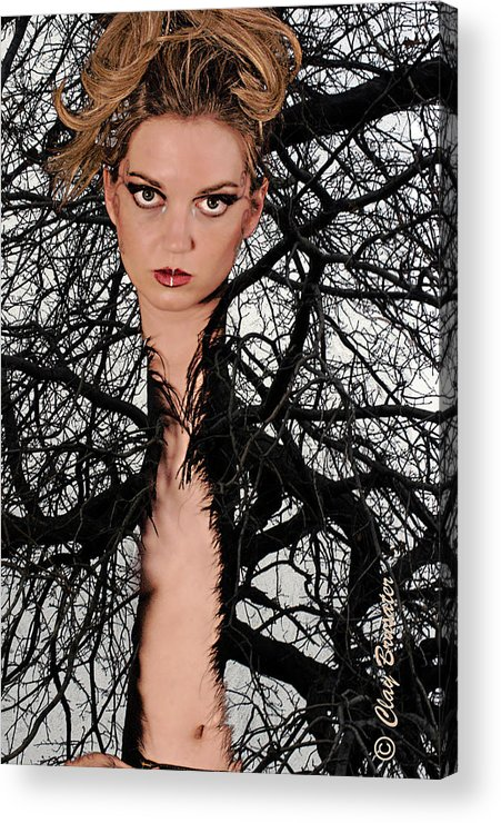 Composite Acrylic Print featuring the photograph Beauty Of Nature by Clayton Bruster