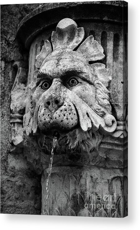 Dubrovnik Acrylic Print featuring the photograph Black And White Lion Fountain On Dubrovnik Stradun, Dubrovnik, Croatia by Global Light Photography - Nicole Leffer