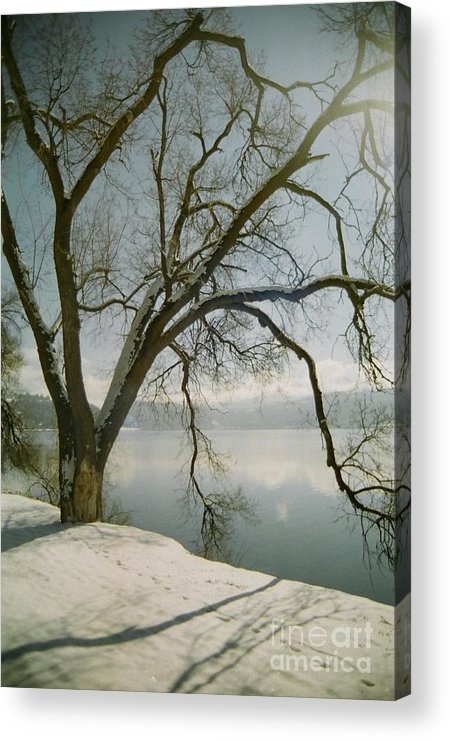 Blue Acrylic Print featuring the photograph Blue Dream by Idaho Scenic Images Linda Lantzy