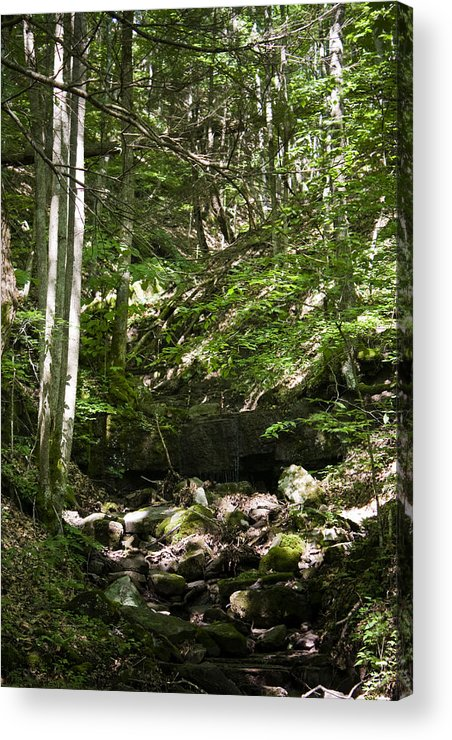 Bluestone Acrylic Print featuring the photograph Bluestone State Park Mountain Stream West Virginia by Teresa Mucha