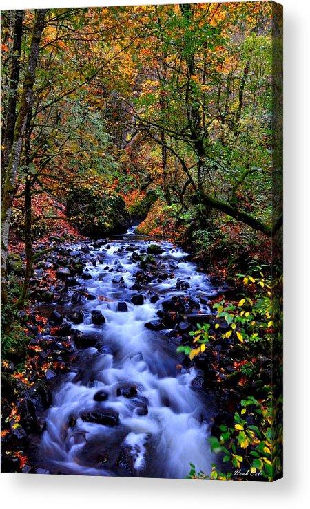 Stream Acrylic Print featuring the photograph Bridal Veil Creek by Noah Cole