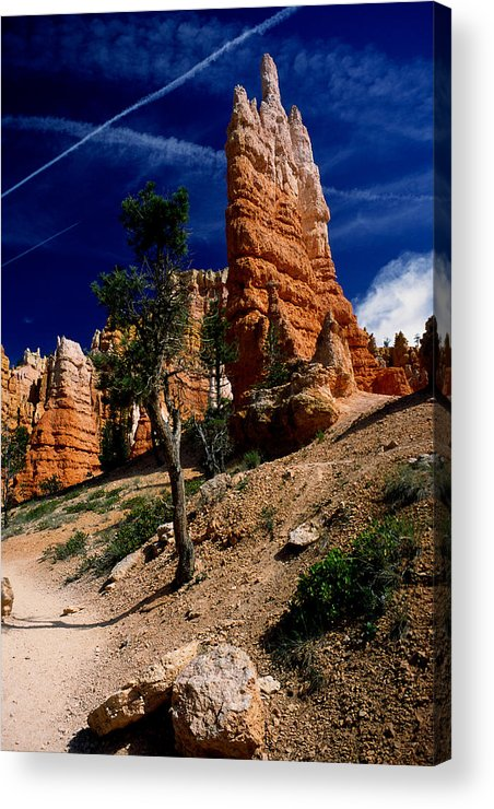 Bryce Canyon Acrylic Print featuring the photograph Bryce Canyon 10 by Art Ferrier