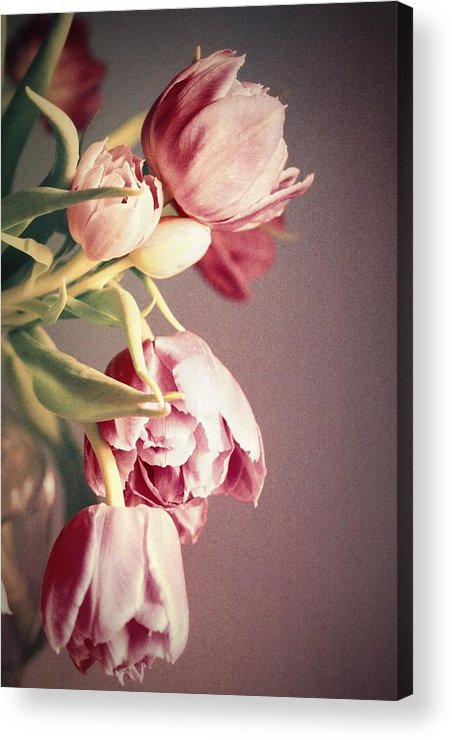 Tulips Acrylic Print featuring the photograph Bunch Of Beauties by Cathie Tyler