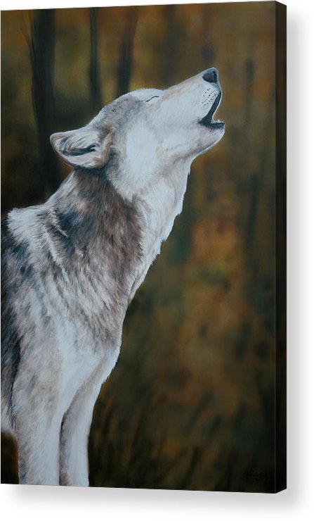 Wolf Acrylic Print featuring the painting Call Of The Wild by Charlotte Yealey