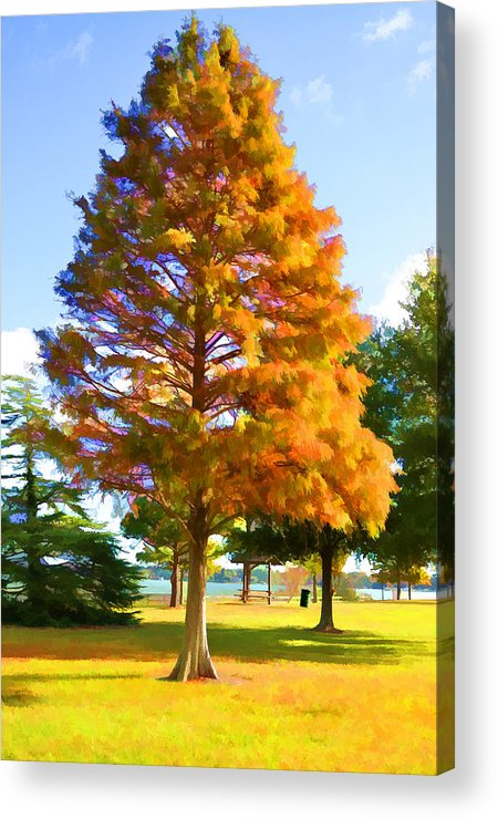 Portsmouth City Park Acrylic Print featuring the painting City Park 3 by Jeelan Clark