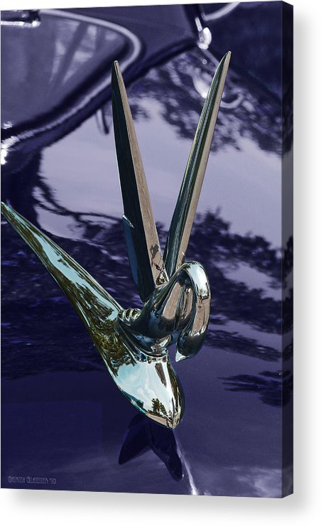 Hood Ornament Acrylic Print featuring the photograph Classic Car Packard Silver Goose by Garth Glazier