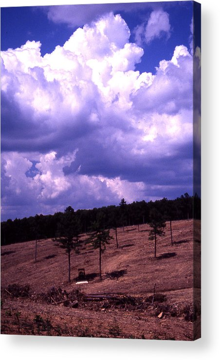 Acrylic Print featuring the photograph Clear-cut by Curtis J Neeley Jr