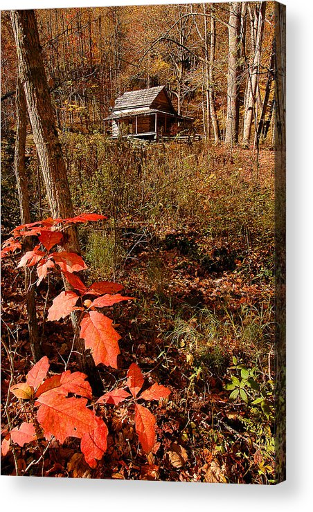 Log Cabin Acrylic Print featuring the photograph Cook Cabin by Alan Lenk
