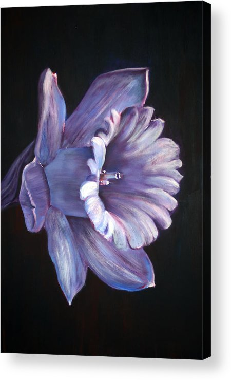 Flower Acrylic Print featuring the painting Daffodil by Fiona Jack