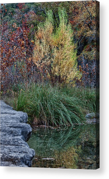 Landscape Acrylic Print featuring the photograph Fall Foliage Reflections At Lost Maples by James Woody