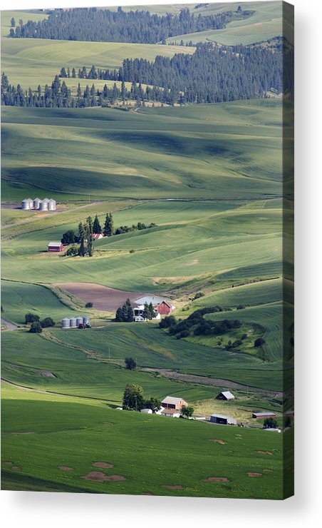 Fertile Acrylic Print featuring the photograph Farmland In Eastern Washington State by Carl Purcell