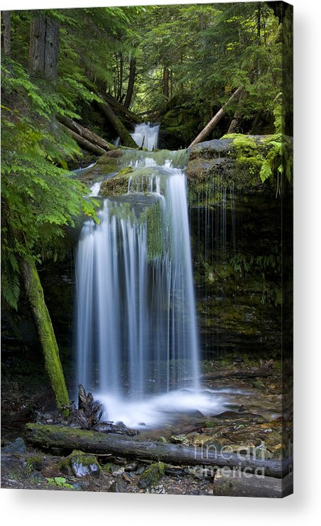 Waterfalls Acrylic Print featuring the photograph Fern Falls by Idaho Scenic Images Linda Lantzy