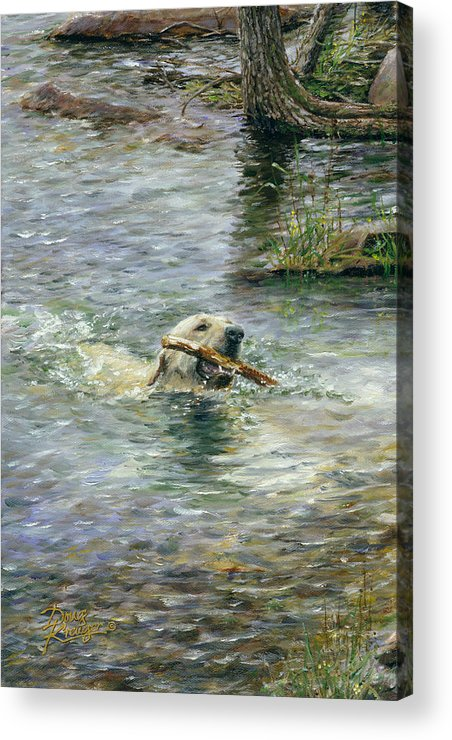 Yellow Lab Acrylic Print featuring the painting Fetch by Doug Kreuger