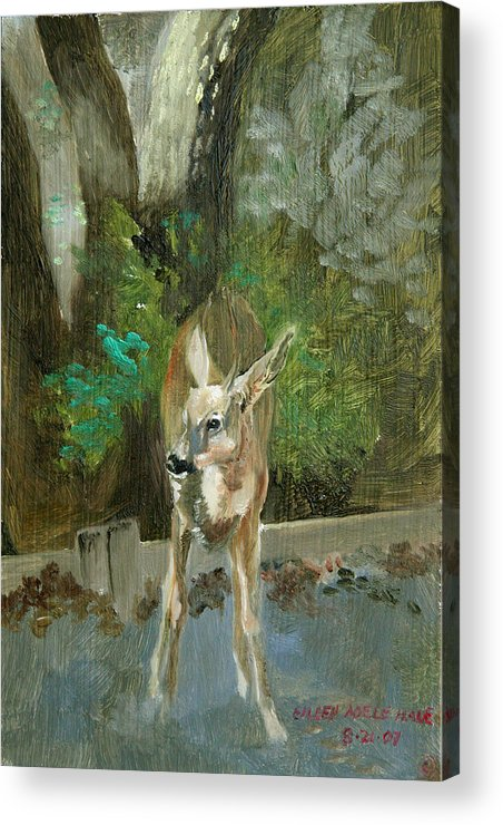 Deer Acrylic Print featuring the painting First Young Buck Pad by Eileen Hale