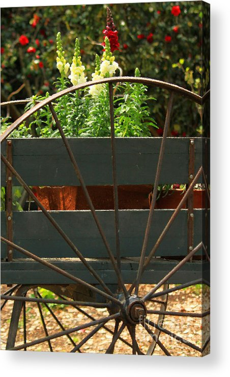 Floral Acrylic Print featuring the photograph Flowers In The Cart by James Eddy
