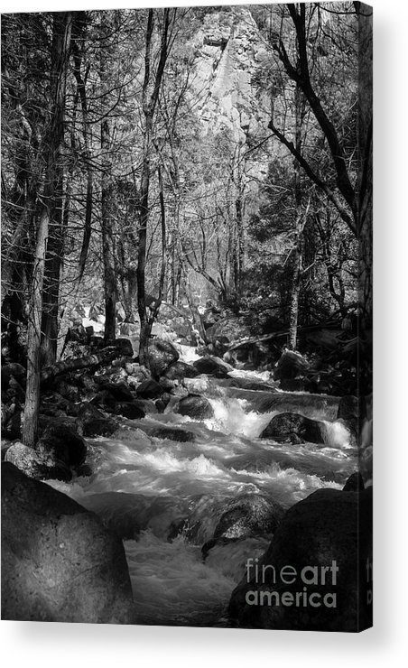 Creek In Black And White Acrylic Print featuring the photograph Flowing Creek by Sylvia Sanchez