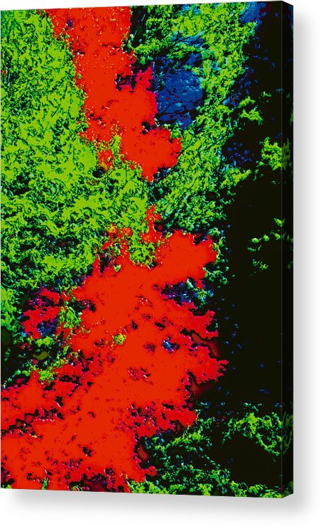 Acrylic Print featuring the digital art Foliage Trees Dd5b by Modified Image