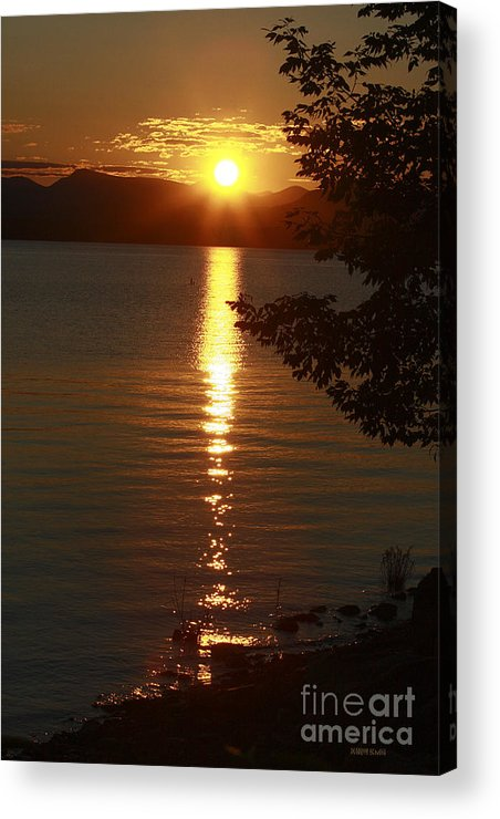 Sunset Acrylic Print featuring the photograph Golden Evening Sun Rays by Deborah Benoit