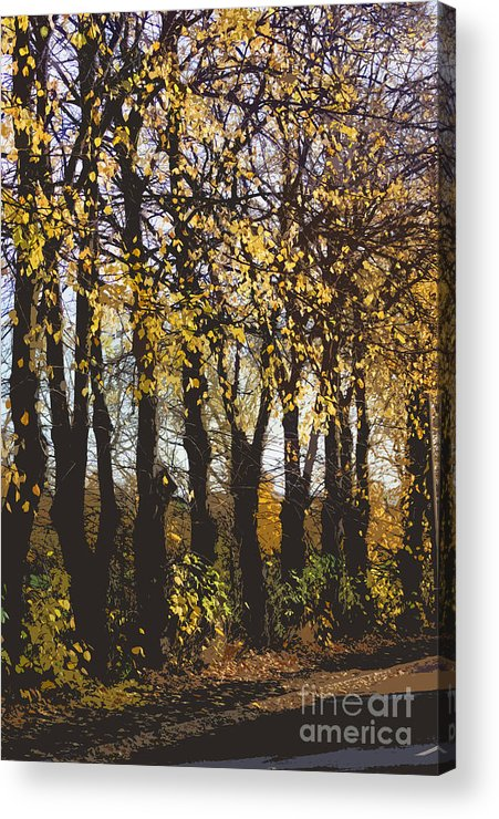 Abstract Acrylic Print featuring the digital art Golden Trees 1 by Carol Lynch