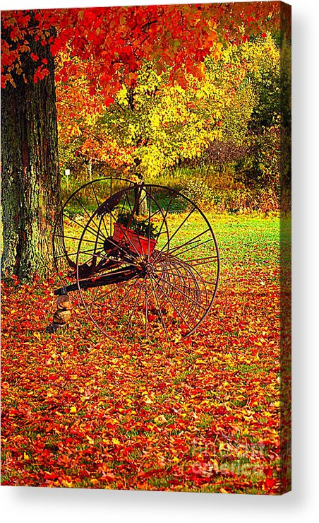 Diane Berry Acrylic Print featuring the photograph Gone With The Wind by Diane E Berry