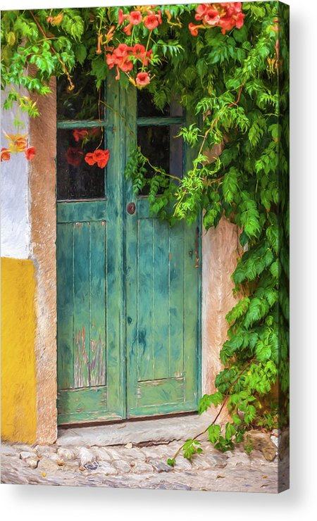 David Letts Acrylic Print featuring the painting Green Door With Vine by David Letts