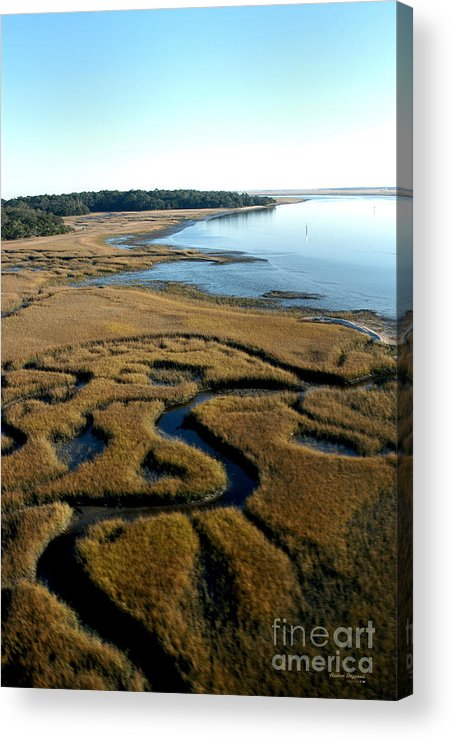 Florida Acrylic Print featuring the painting Guana River by Addison Fitzgerald